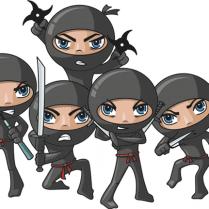ninja-group1-209x209