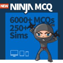 ninja-mcq